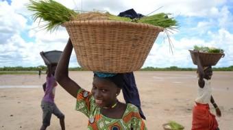 Viaje a Gambia sostenible. Grupo Verano. De la costa al interior