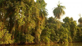 Viaje a Gambia. Semana Santa. Sostenible