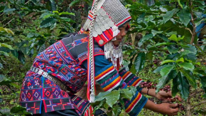 Viaje a Tailandia. Voluntariado. Ecotrekking cultural y alternativo al norte de Tailandia