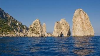 Viaje de voluntariado en Italia. Protección de delfines en Nápoles
